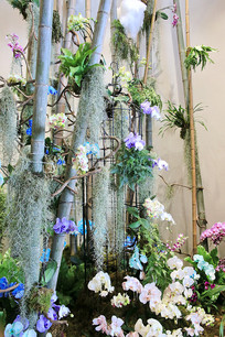 竹子花架展示台