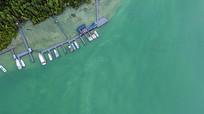 喀纳斯湖码头