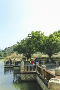 广州香雪公园一角