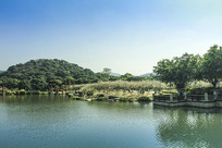 广州香雪公园一隅