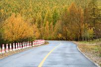 大兴安岭林区山林公路秋色