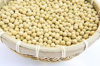 黄豆子素材