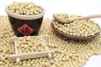 五谷杂粮大黄豆摄影
