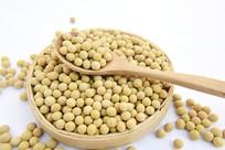养生粥食材黄豆