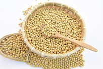 一堆的大黄豆