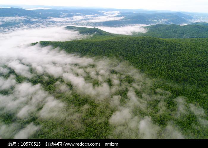 大兴安岭茂密林海云雾图片