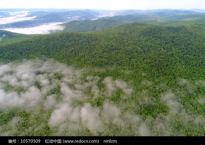 大兴安岭原始森林云海图片