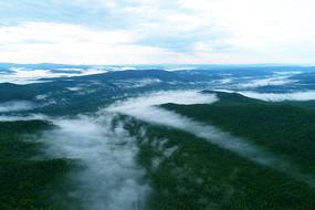 航拍大兴安岭云雾森林
