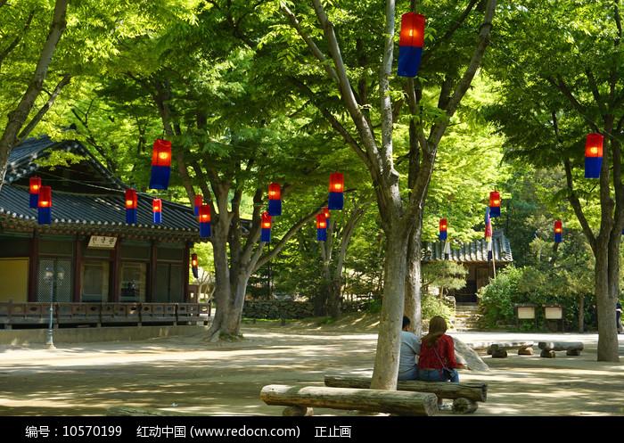 韩国传统红蓝色灯笼图片