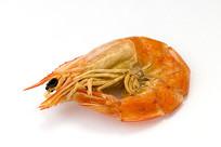 一只亮白透红海虾干图片