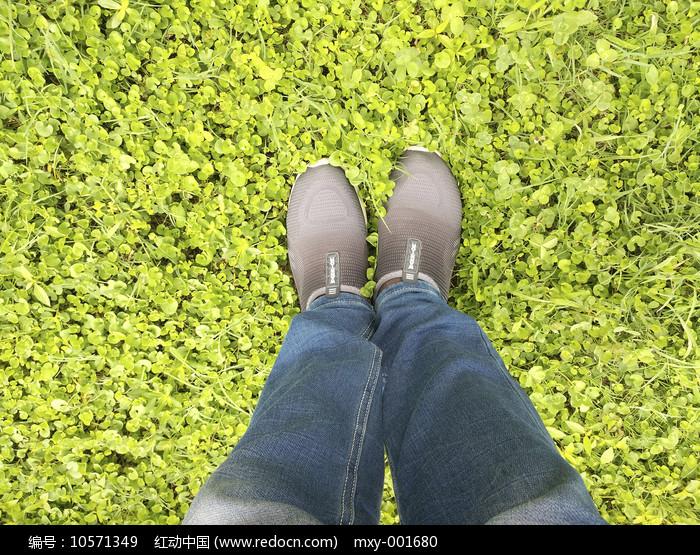 草地双脚图片