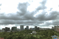 乌云与绿地