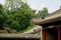 北京北海公园亭亭玉立亭