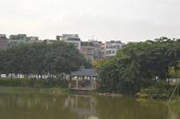 广州儿童公园景观