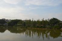 广州儿童公园水库风景