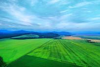 航拍辽阔的绿色田野
