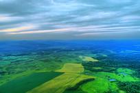 航拍无垠的绿色田野
