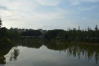 黄昏时的人工湖倒影