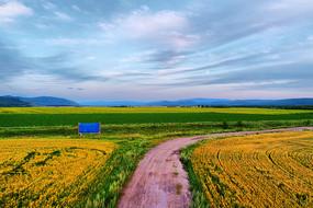 呼伦贝尔田野之路