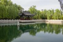 济南珍珠泉优美的风光