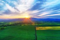 绿色田野日落