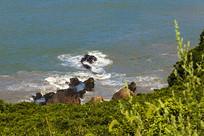 舟山朱家尖大青山礁石风景