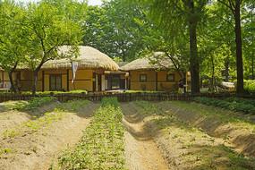 韩国民俗村的传统草房民居
