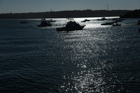光影中的游艇