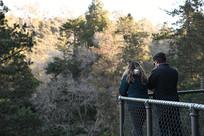 绿色植物园的情侣