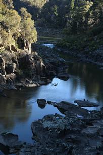 自然植物园河流