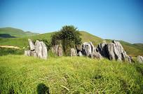 南方草原的石头山