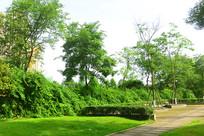 城市绿地里的健身步行道