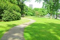 城市树林和草坪里的步行道