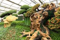寿光菜博会景观造型
