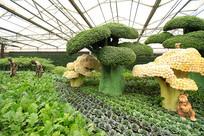 寿光菜博会景观之西蓝花造型