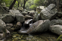 小溪的石头