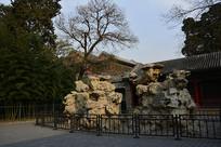 颐和园的奇石母子石