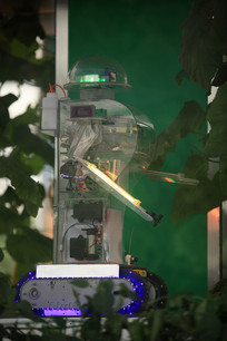 寿光菜博会景观之绿色科技