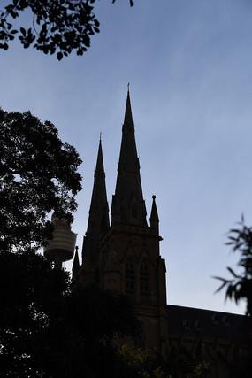悉尼圣玛丽大教堂剪影