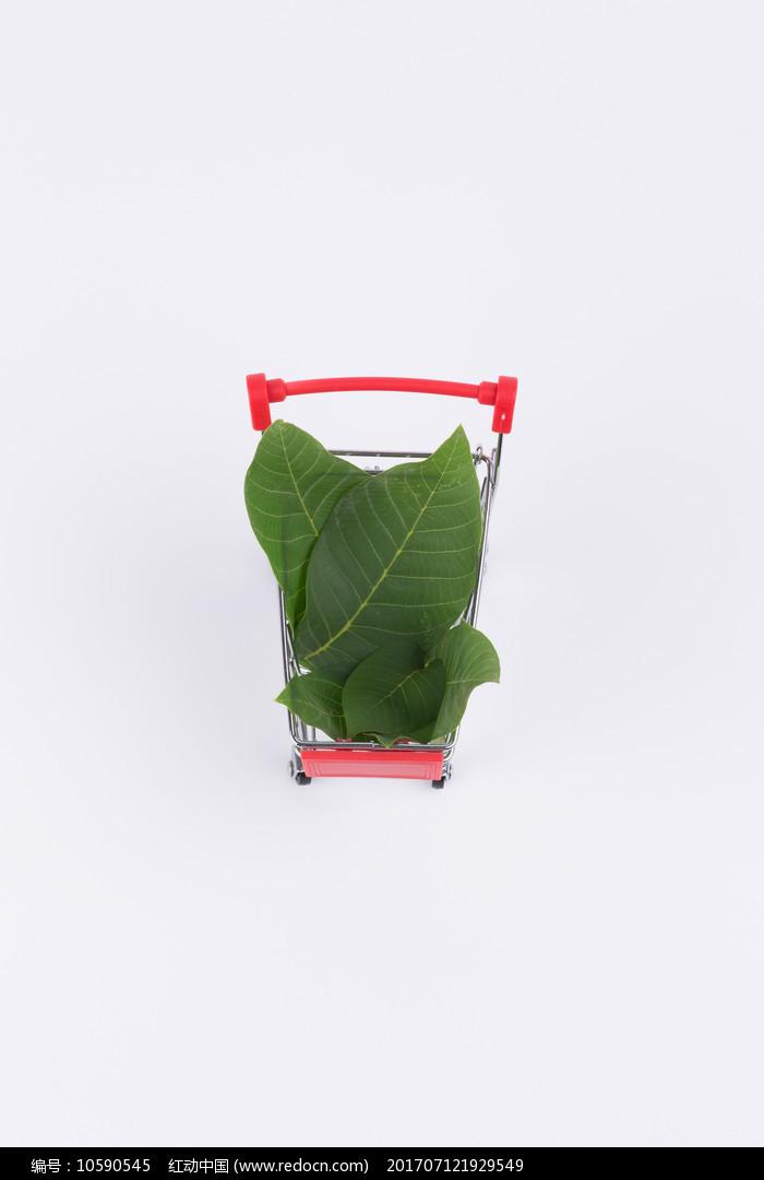 装着绿色树叶的红色购物车图片