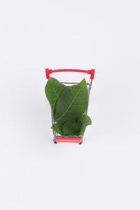装着绿色树叶的红色购物车