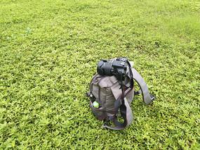 草地背包相机