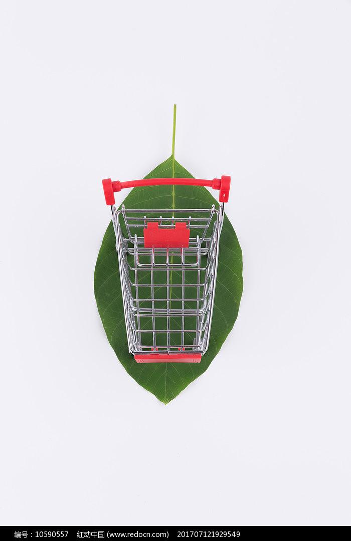在树叶上的购物车图片