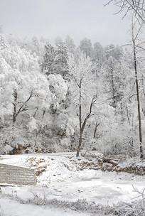 四川川藏线国道原始森林积雪