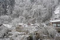 四川海螺沟冰川温泉区雪景