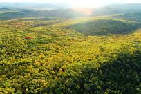 航拍大兴安岭秋季原始森林晨光