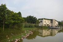 河流边的建筑与绿化