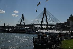 悉尼大桥景观