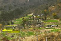 四川泸定县磨西镇乡村的春天