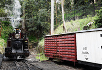 墨尔本小火车机车